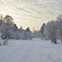 Дорога в зимнюю сказку :: Татьяна Соловьева