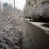 Зима 2020 г. :: Serg