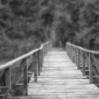 Мост. :: Андрей