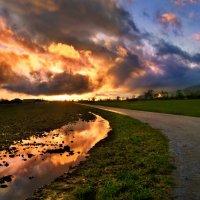 тревожный закат :: Elena Wymann