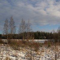 Зимняя природа :: Aнна Зарубина