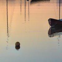 тихая вода :: Olga Udo