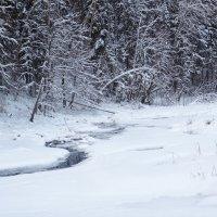 В своей хрустальной колыбели река уснула крепким сном :: Денис Бочкарёв