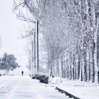 Зима.. :: Александр Довгий
