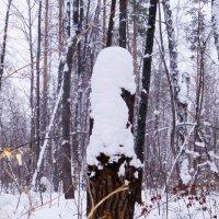 Снежный солдатик :: Raduzka (Надежда Веркина)