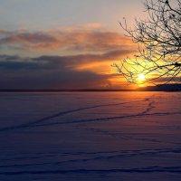 Закат солнца на нарвском водохранилище :: Marina Pavlova