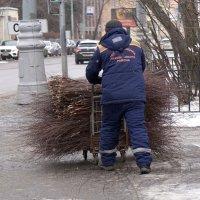 Во дворах будет чисто :: Алексей Виноградов