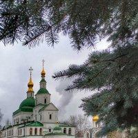 Даниловский монастырь :: Валентина. .