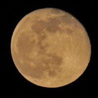Луна, сегодня 10 фев 2020 :: Светлана
