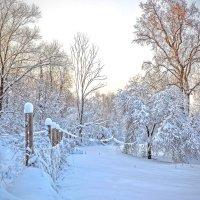 Зима. День клонится к закату. :: Александра Климина