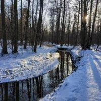 Вариации на тему лесного ручья :: Андрей Лукьянов