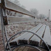 Скамья в снегу :: Алишер Бабиков