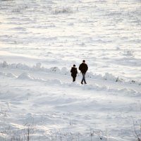 Белый плен:) :: Татьяна Евдокимова