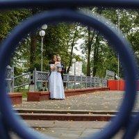 Свадебная фотосессия Климовичи :: Евгений Третьяков