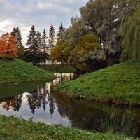 Осенний смотр... :: Валентина Харламова