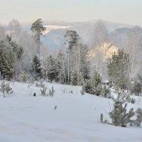 Морозный день в январе :: Татьяна Соловьева