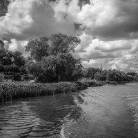 На реке Цне ......... :: Александр Селезнев