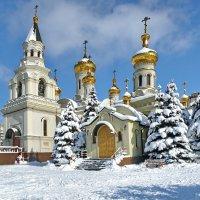 Зима пришла :: Валерий Тарасов