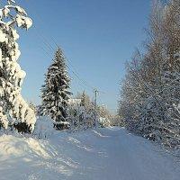 Бывали и такие зимы. :: Валентина Жукова