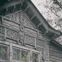 Жизнь в безжизненном окне. :: Андрий Майковский