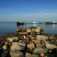 Паломники на Заяцком острове :: Зуев Геннадий