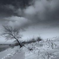 Зимний пейзаж :: Igor Baranov