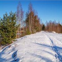 Время-Февраль .. # 4 :: Андрей Дворников