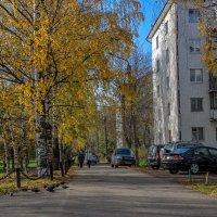 Осень в городе :: gribushko грибушко Николай