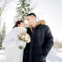 Свадьба зимой :: Антон Хряпочкин