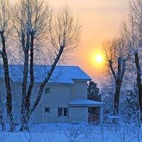 Зимний день на острове Татышев :: Екатерина Торганская