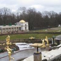 Петергоф без фонтанов. Февраль :: Маера Урусова