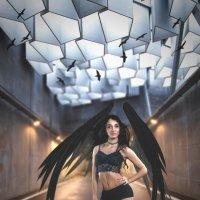 Dark Angel :: Павел Левин