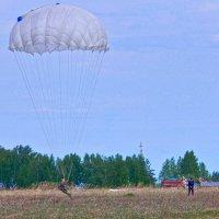 Идеальное приземление! :) :: Елена Хайдукова  ( Elena Fly )
