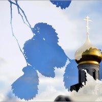 Легкая грусть :: Николай Кувшинов