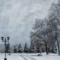 Зимняя зарисовка :: Роман Савоцкий