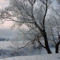 Предчувствие весенних перемен... :: Лесо-Вед (Баранов)