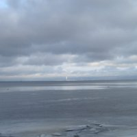 Южное побережье  Финского залива :: Маера Урусова