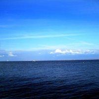 Ах,море...море... :: Самохвалова Зинаида