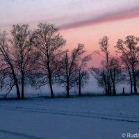 Зима, туман, сумерки :: Сергей