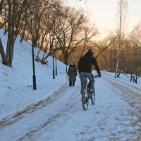 Прогулки зимой :: Ольга Довженко