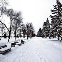 Морозный денёк :: Raduzka (Надежда Веркина)