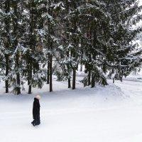 Зима в Башкирии :: Надежда Середа