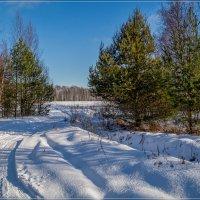 Подмосковная Зима 2020 # 3 :: Андрей Дворников