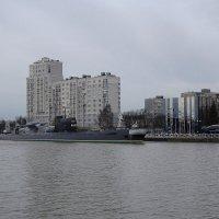 Набережная Петра Великого :: Маргарита Батырева