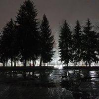 парк :: Батик Табуев