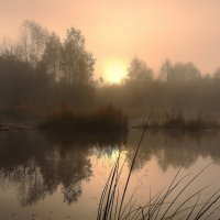 Туман... :: Сергей Иваныч
