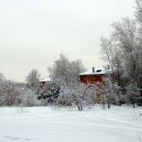 Зима. :: Мила Бовкун