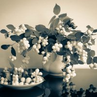 Снежные ягоды :: Irene Irene
