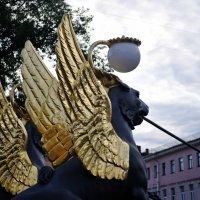 золото грифонов... :: Андрей Вестмит