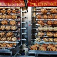 бедные курицы! :: Георгий А